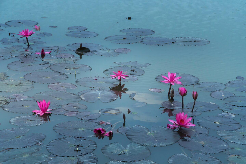Meer rust? Tips om te gaan mediteren!