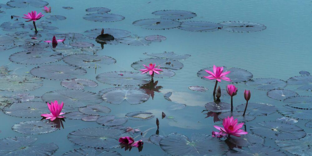 tips om te gaan mediteren